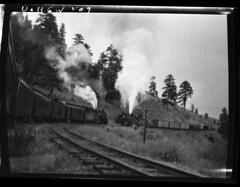 D+RGW209 (barrigerlibrary) Tags: railroad library denverriogrande drgw barriger