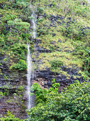 2144187_RAW (Mr Inky) Tags: hawaii kauai haenastatepark olympusem5 panasonic1235mmf28