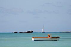 Esta calma la cosa (Picardo2009) Tags: beach boat barco playa aruba shipwreck caribbean palmbeach bote netherlandsantilles caribe naufragio shipwrek antillasholandesas