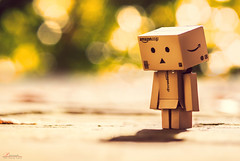 Sad Danbo (_Hadock_) Tags: desktop light sunset shadow wallpaper naturaleza macro green love luz apple nature up photoshop de toy happy photography hope amazon nikon ipod dof sad close time bokeh head background samsung sigma sombra pic screen best triste mueco cry fotografia fondo f28 esperanza imagen feelings pantalla mejor s5 mejores iphone saver 5s 105mm ipad llorar danbo walpaper sentimientos dambo d80 mbd80