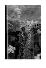 Not so brand new leopard skin print dress (Richard C. Johnson: AKA fishwrapcomix) Tags: sea blackandwhite bw window minnesota shop reflections midwest dress decay gulls storefront shopwindow secondhand decline duluth 18mm endofempire sunrisesintheeast fauxpearls sunsetsinthewest economicdownturn thegreatrecession paxamericanus fujixfpro1 fauxlilly