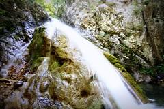 The gorgeous Șușara gorges in Romania