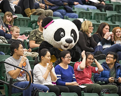 A77V7126 (Don Voaklander) Tags: woman man male men college sports basketball sport female community women university edmonton bears varsity alberta pandas golden centre university mens voaklander saville donvoaklander