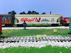 (DreadnokDread) Tags: cars scale model trains wells ho containers csx modeltrains hoscale reefers armns intermodals diostructure warehouseho