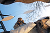 Trash-portait (Through the lens of a local) Tags: old bridge blue sky woman sun cold holland reflection tree netherlands girl dutch trash d50 carpet mirror garbage nikon mess europa europe blauw day bright wind spiegel centre nederland mirrors boom crap rubbish boxes dozen brug lucht dag helder nederlands centrum zon oud vrouw meisje rommel koud weerspiegeling vuilnis reflectie troep spiegels spiegelbeeld tapijt grofvuil weerkaatsing