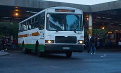 Golden Arrow Bus to Merrydale (jayayess1190) Tags: city urban bus publictransportation capetown vehicle commuter passenger masstransit goldenarrow