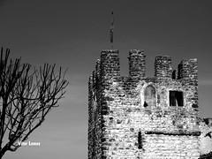Castelo de Soure (verridrio) Tags: city b urban bw white black castle monument monochrome branco arquitetura noir monumento w negro 123 medieval preto castelo urbano chateau bianco nero castillo ville monocromatico soure