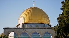 Kubbet's Sahr'a (ilmikadim) Tags: blue tree green yellow gold jerusalem dome alaqsa kubbetssahra mescidiaksa