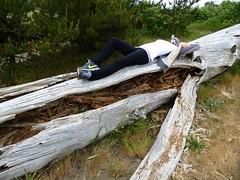 The discreet charm of decadence (misiekmintus) Tags: woman nature girl log decay decadence plainaire