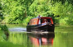 Barge on the canal in Wolseley Bridge (tallsmilesdown) Tags: canal barge wolseley rivertrent wolseleybridge staffordshirenaturetrust bargeonthetrent