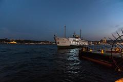 IMGP2354-2 (UmitCukurel) Tags: nightphotography sea night cat turkey puente mar pentax turkiye istanbul gato turquia bogazici bosphorus kedi kizkulesi maidentower k3ii