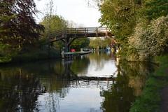 Hurley Bridge 2 (rq uk) Tags: bridge thames reflections river nikon d750 riverthames hurley thamespath afsnikkor28300mmf3556gedvr nikond750 rquk