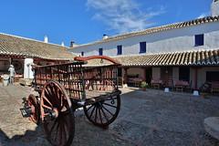Don Quixote (HDH.Lucas) Tags: spain village lucas donquixote