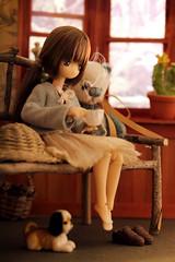 sweethome (customlovers) Tags: dog coffee doll tea plush himeno azone cubolotti picconeemo