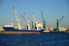 Zuidnatie Terminal (DST_8691) (larry_antwerp) Tags: port ship belgium belgi vessel devotion antwerp  antwerpen  schip bocs                          9500053 wafpassion