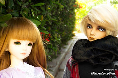 Crnica 15 (2/2) (Osmundo Gois) Tags: victorique frederik jid kyle alina dolllove bjd msd doll toy