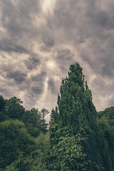 angry sky (gammarART) Tags: sky clouds canon heaven sony dramatic himmel wolken 7r 2485