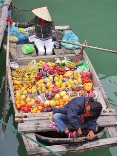baie halong - vietnam 8