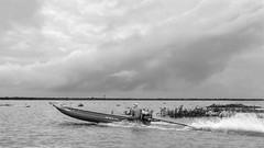 Speeding across Tonle Sap (tmeallen) Tags: cambodia horizon kampong speeding longtailboat stormclouds tonlesap roostertail phluk monsoonseason waterhyacinths floodedlake semisubmergedtrees