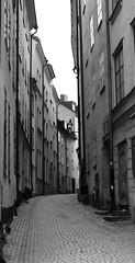 Gamla Stan in Stockholm (pegase1972) Tags: bw europe sweden stockholm cobblestone sude