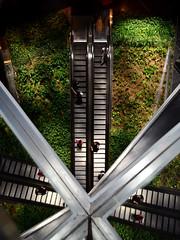 escalators (pedro smithson) Tags: above park green architecture garden nikon contemporary candid interior balcony escalator central sydney australia x architect lookdown nouvel oceania jeannouvel oceanica contemporaryarchitecture d5100 pedrosmithson