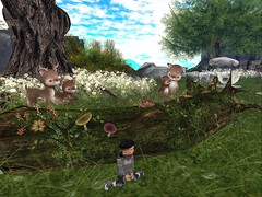 Deersss! (Zaidon Resident) Tags: pictures flowers trees sky people nature boys grass fashion animals kids clouds hair landscape photography photo pc 3d rocks pretty babies photographer designer exploring blogger deer gaming secondlife gamer blogging reality dope fawns photograpy photooftheday virtural toddleedoo