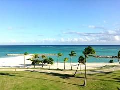 View (daach14@sbcglobal.net) Tags: ocean sea palmtrees sky blue clouds outdoor photo dominicanrepublic sand beach