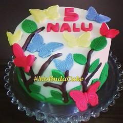 Mesversario lindo!!! 🎂👸🎉🍰🍃🍫 #molindacake #cakedesign #cakedecorating #cake #cakeart #sweet #cakebutterfly #bolojardim #bolo #bolomesversario #borboletas #bolodemenina #5meses #candy #instacake #instacake (Molinda Cake) Tags: boss cake pasta americana bolo bolos confeitados molinda