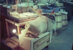 Tulum peyniri - Istanbul 1976 - Bog2Strip103.4.red (Niels R.) Tags: tulum istanbul goatscheese bagpipe paneer grandbazar tulumpeyniri peyniri