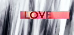 L O V E artwork (* Mel Fisher *) Tags: pink abstract art love monochrome smile digital way grey artwork focus truth heart god spirit yes air awesome think breath feel rosa happiness sparkle reason freak font letter doit awake moment lovely awareness now typo schrift herz exclusive liebe meaning blessed stimmung feelings shin heal belive oho meaningful edel hihi hach gefhle cloured lovedrunk trueyou spimple