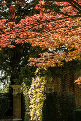 Goldney Gardens (clogette) Tags: red england tree gardens bristol unitedkingdom gb clifton bristoluniversity goldneyhall goldneygarden