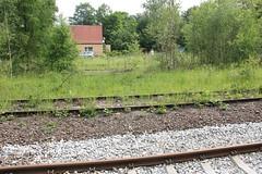 Jedlina-Zdrj train station 11.06.2016 (szogun000) Tags: railroad overgrown station canon tracks poland polska rail railway disused pkp lowersilesia dolnolskie dolnylsk canoneos550d canonefs18135mmf3556is jedlinazdrj d29285 d29286