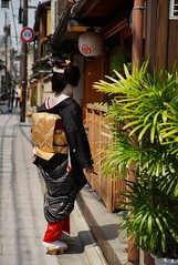 -3 (nobuflickr) Tags: japan kyoto maiko geiko    kimihiro    miyagawachou  20160615dsc03273