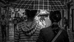 A rainy day in Jingzhou (Foto_Michel) Tags: china street light rain umbrella licht blackwhite shaddow rainy schwarzweiss schatten regen han jingzhou regenschirm
