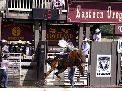 Right Out of The Chute (Armen Woosley) Tags: oregon bareback prca eastern bronc 109th ridinghorses livestockshowrodeo
