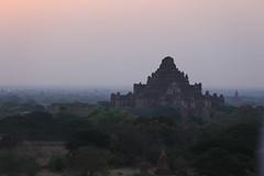2016myanmar_0402 (ppana) Tags: bagan alodawpyay pagoda ananda temple bupaya dhammayangyi dhammayazika gawdawpalin gubyaukgyi myinkaba wetkyiin htilominlo lawkananda lokatheikpan lemyethna mahabodhi manuha mingalazedi minochantha stupas myodaung monastery nagayon payathonzu pitakataik seinnyet nyima pagaoda ama shwegugyi shwesandaw shwezigon sulamani thatbyinnyu thandawgya buddha image tuywindaung upali ordination hall