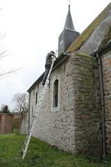 IMG_3087 (De Tuinen van Servaas en Dorothe) Tags: duiven mest dakgoot stof gebinte