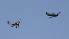 FlyNavy June2016_Glad_04 (andys1616) Tags: gloster gladiator k7985 gamrk flynavy airshow shuttleworthcollection oldwarden aerodrome biggleswade bedfordshire june 2016 northamerican t6 harvard 285068 gkamy kennetaviation