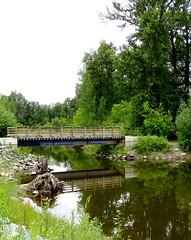 Very still water (diffuse) Tags: bridge trees water reflections mirror still quiet railings 116 cottonwoodislandpark