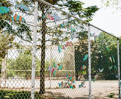 HFF: Flying Fish Edition (marysmyth(NOLA13) ) Tags: school urban fish toronto art film fence mediumformat project chainlink thebeach hff queenstreeteast kodakportra400 mamiya7ii