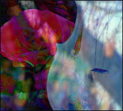 LA VIE EN ROSE (poppycocqu) Tags: pink light sunlight paris france color colour art love rose collage globe artwork colorful poetry poem shadows map memories eiffeltower content poetic romance photographs violin memory processing romantic colourful musicalinstrument appartement dappled processed bohemia bohemian quotation compilation reminiscing latinquarter contented prose layered reminiscent lavieenrose labohme liehtzu lauraanton