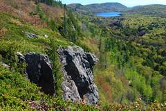 Escarpment View (dcclark) Tags: statepark up landscape outdoor michigan ridge upperpeninsula escarpment coppercountry porcupinemountains lakeoftheclouds