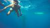 whale shark viewing & tumalog falls (18 of 26) (Rodel Flordeliz) Tags: sea water swimming snorkeling freediving cebu whaleshark gentlegiants opensea butanding oslob southofcebu whalesharkviewing