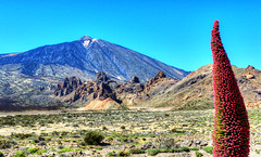 Ucanca y Teide (etoma) Tags: tenerife teide islascanarias volcn tajinaste lascaadasdelteide parquenacionaldelteide valledeucancaroquesdegarca
