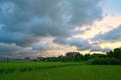 2016-07-07 18.52.54 (pang yu liu) Tags: 2016 jul  07 pate   typhoon  dusk farm