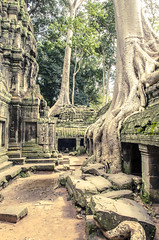 Cambodia-5740 (Daemarius) Tags: travel holiday architecture photography ancient cambodia angkorwat temples reap angkor wat siam bayon siamreap wondersoftheworld