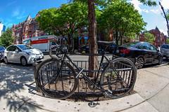 Black Fuji Fixie (Voluntary Amputation) Tags: urban boston ma graffiti bikes bostonist
