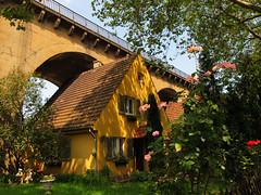 Living under the Railway Bridge (Batikart) Tags: door city bridge blue trees windows roof light shadow roses summer chimney sky urban plants house color colour building yellow architecture canon germany garden geotagged outdoors deutschland europa europe day cityscape stuttgart sommer pflanzen citylife himmel haus tranquility arches journey stadt shutters architektur blinds romantic rosen railing ursula brcke curiosity garten contrasts railwaybridge eisenbahnbrcke sander g11 rarity nordbahnhof badenwrttemberg swabian 100faves 2013 viewonblack seltenheit kuriositt houseunderthebridge batikart canonpowershotg11 hausunterderbrcke