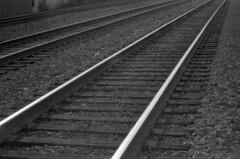 Lines (GateCityRadio) Tags: blackandwhite bw film blackwhite pentax k1000 bnw filmisnotdead filmfeed buyfilmnotmegapixels