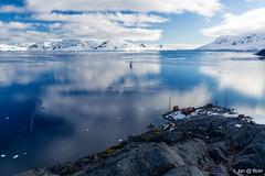 Almirante Brown Antarctic Base, Paradise Bay, Antarctica (x_tan) Tags: antarctica glacier iceberg paradisebay akademiksergeyvavilov canonef24mmf14liiusm canoneos5dmarkiii almirantebrownantarcticbase